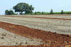 Agricultural land at rest waiting to be plowed Royalty Free Stock Photography
