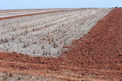 Agricultural land at rest waiting to be plowed. Agricultural land  at rest after harvest waiting to be plowed Stock Image