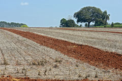Agricultural land at rest waiting to be plowed Royalty Free Stock Photos
