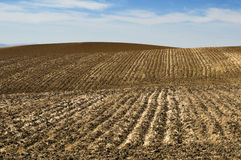 Agricultural land soil and blue sky Royalty Free Stock Images
