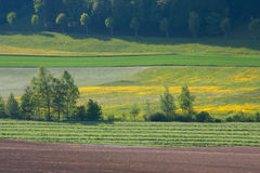 Layered Farmers Fields Stock Images