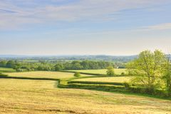 Agricultural Landscape of South West England. View in May of freshly cut fiields of grass showing use of hedges as field enclosures and boundaries in Dorset stock photography