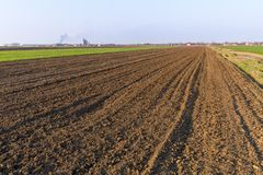 Agricultural landsaple, arable crop field.  Royalty Free Stock Images