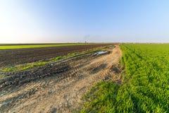 Agricultural landsaple, arable crop field.  Stock Image