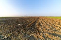 Agricultural landsaple, arable crop field.  Stock Photos