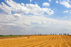 Agricultural landscape. Agricultural landscape, machinery harvesting wheat, Europe Stock Images