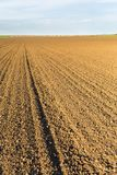 Agricultural landscape, arable crop field.  Stock Photo