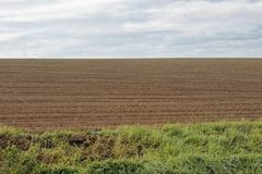 Agricultural landscape. Arable crop field Royalty Free Stock Photo