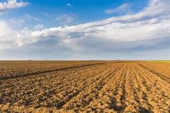 Agricultural landscape, arable crop field. Agricultural landscape Stock Images