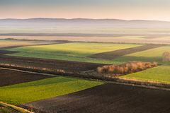 Agricultural landscape, arable crop fields. Agricultural landscape, arable crop field Royalty Free Stock Photo