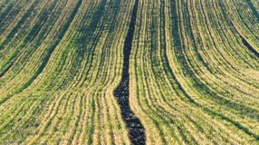 Agricultural landscape, arable crop fields. Agricultural landscape, arable crop field Royalty Free Stock Photos