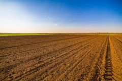 Agricultural landscape, arable crop field. Arable land is the land under temporary agricultural crops capable of being ploughed and used to grow crops Stock Photo