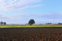 Agricultural landscape, arable crop field. Countryside landscape arable. Plowed soil in  farmland Royalty Free Stock Images