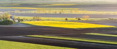 Agricultural landscape, arable crop fields. Agricultural landscape, arable crop field Stock Photos