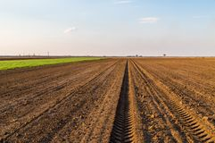 Agricultural landscape, arable crop field. Arable land is the land under temporary agricultural crops capable of being ploughed and used to grow crops Royalty Free Stock Photo