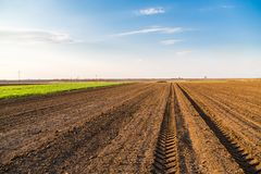 Agricultural landscape, arable crop field. Arable land is the land under temporary agricultural crops capable of being ploughed and used to grow crops Stock Photography