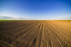 Agricultural landscape, arable crop field. Arable land is the land under temporary agricultural crops capable of being ploughed and used to grow crops Royalty Free Stock Photos