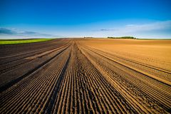 Agricultural landscape, arable crop field. Arable land is the land under temporary agricultural crops capable of being ploughed and used to grow crops Royalty Free Stock Images