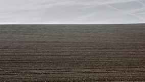 The agricultural landscape, arable crop field. Agricultural landscape, arable crop field sutto a gray and cloudy sky Stock Image