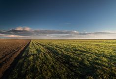 Agricultural landscape, arable crop fields Stock Photo