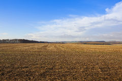 Agricultural landscape in autumn Stock Image
