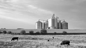 Agricultural Landscape in Black & White Stock Photography