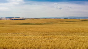 Agricultural landscape with blue sky stock footage