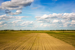 Agricultural landscape Stock Photography