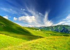 Agricultural landscape Stock Images