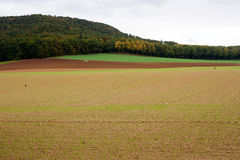 An agricultural landscape. Agricultural fields with a tractor plowing the soil and forest on the background. Location Bad Pyrmont, Germany Royalty Free Stock Image