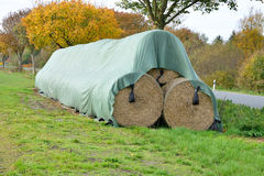 Agricultural landscape of hay bales in a field. Royalty Free Stock Photo