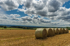 Agricultural landscape. With hey an blue sky Stock Image