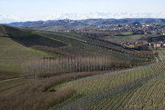 Agricultural landscape on the hills of Langhe, Italy Royalty Free Stock Photos
