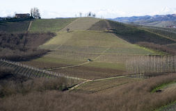 Agricultural landscape on the hills of Langhe, Italy Stock Photography