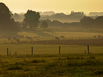 Agricultural landscape misty sunrise Royalty Free Stock Photography