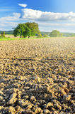 Agricultural landscape with ploughed field. Copy space Stock Photos