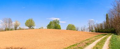Plowed field and country road and blue sky. Agricultural landscape. Plowed field and country road and blue sky Royalty Free Stock Image