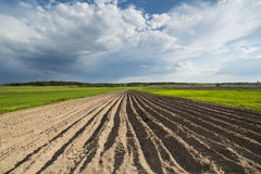 Agricultural landscape, plowed field. Royalty Free Stock Images
