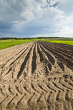 Agricultural landscape, plowed field. Royalty Free Stock Photography
