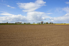 Agricultural landscape with plowed soil Royalty Free Stock Images