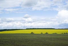 Agricultural landscape in Podolia region of Ukraine Royalty Free Stock Photography