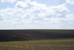 Agricultural landscape in Podolia region of Ukraine Royalty Free Stock Photos