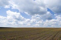 Agricultural landscape in Podolia region of Ukraine Stock Photos