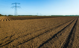 Agricultural landscape with power pylons in the background Royalty Free Stock Photos