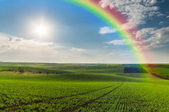 Agricultural Landscape with Rainbow Royalty Free Stock Photography