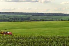 Agricultural landscape Stock Photos