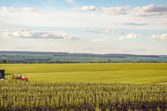 Agricultural landscape. Small scale farming with tractor in field. Agricultural background with copy space Stock Photography