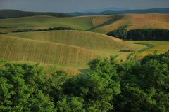 Free Agricultural Landscape. South Of Slovakia, Europe Royalty Free Stock Photo - 106883305