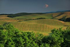 Agricultural landscape. South of Slovakia, Europe. Agricultural landscape. Fields and grassland. South of Slovakia. Region Novohrad Royalty Free Stock Photo