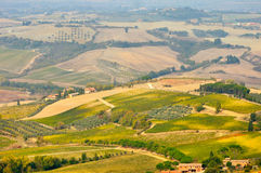 Agricultural landscape in toscana Royalty Free Stock Photography